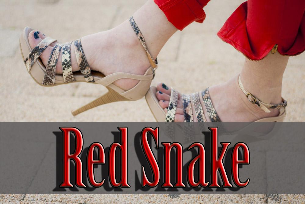 snake print maria mare