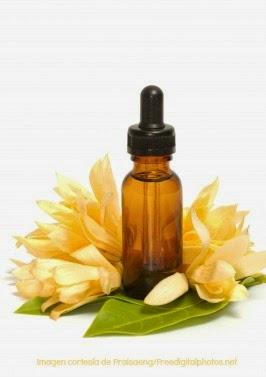 Remedios Naturales con Plantas: Mejorana para el estrés