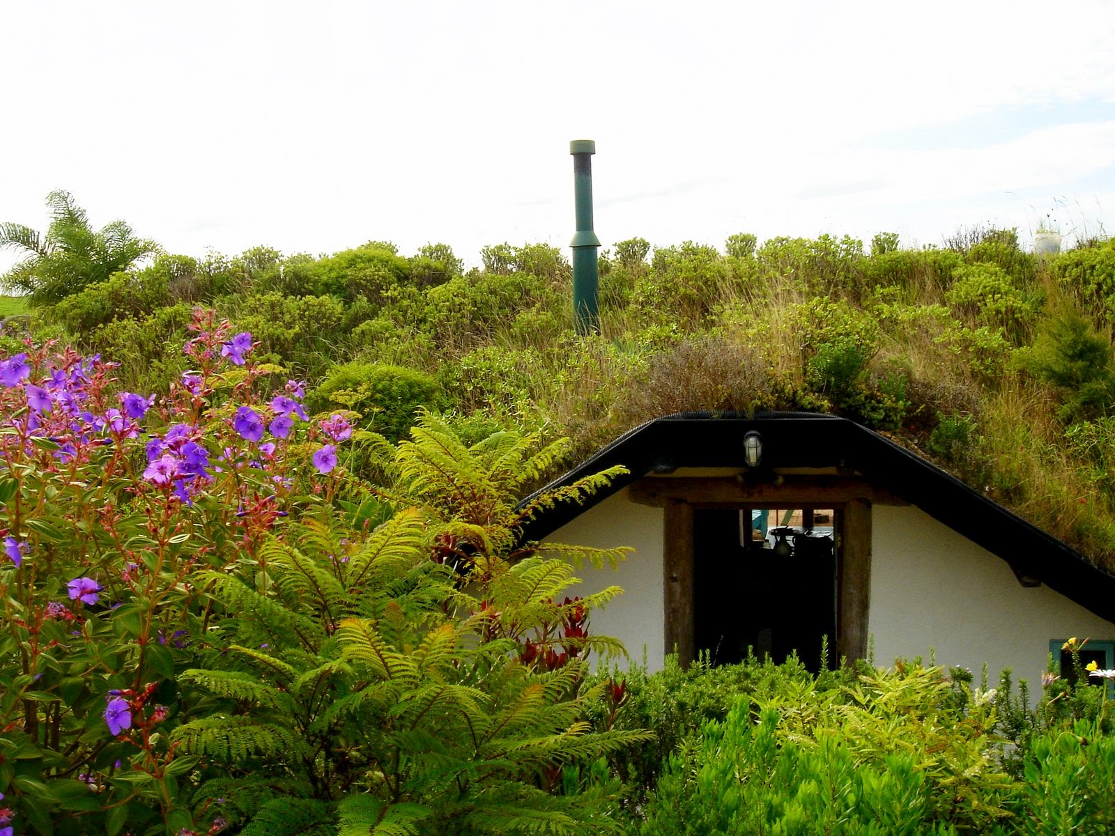 Living Roof Gardens Combining The Beauty Of Nature With The Wonderful  Benefits Of Passive Energy Insulation.