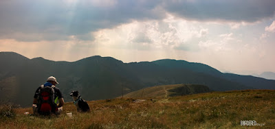 border collie with a man in mountains