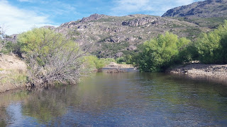 Chilean river fished with Streamside Adventures