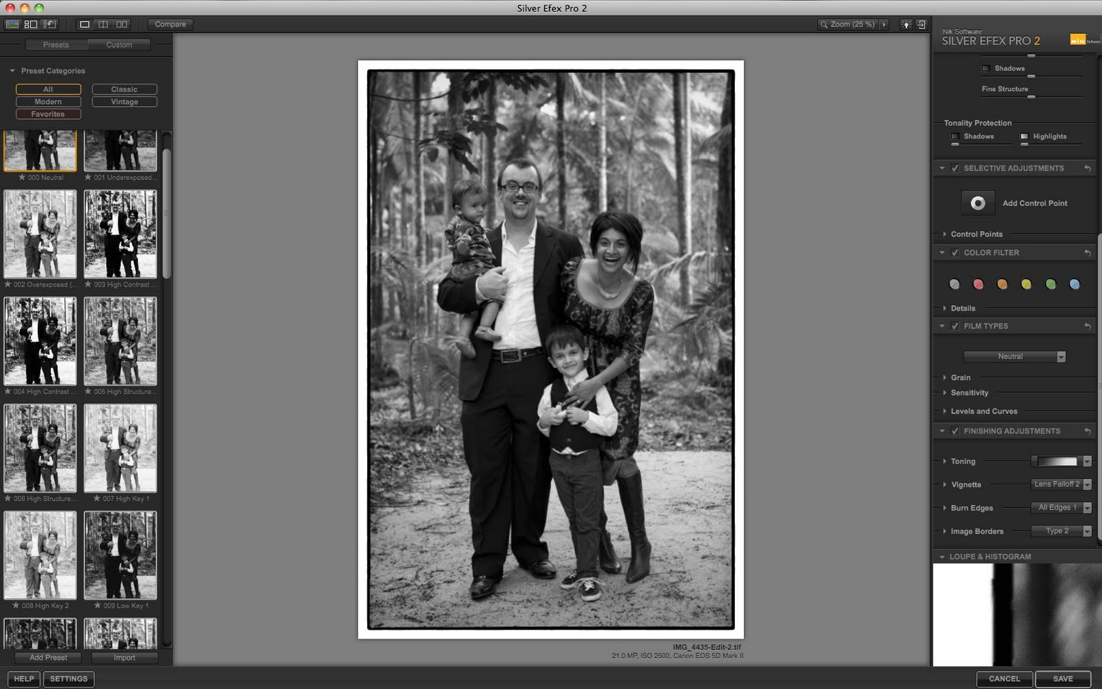 silver efex pro 2 presets download