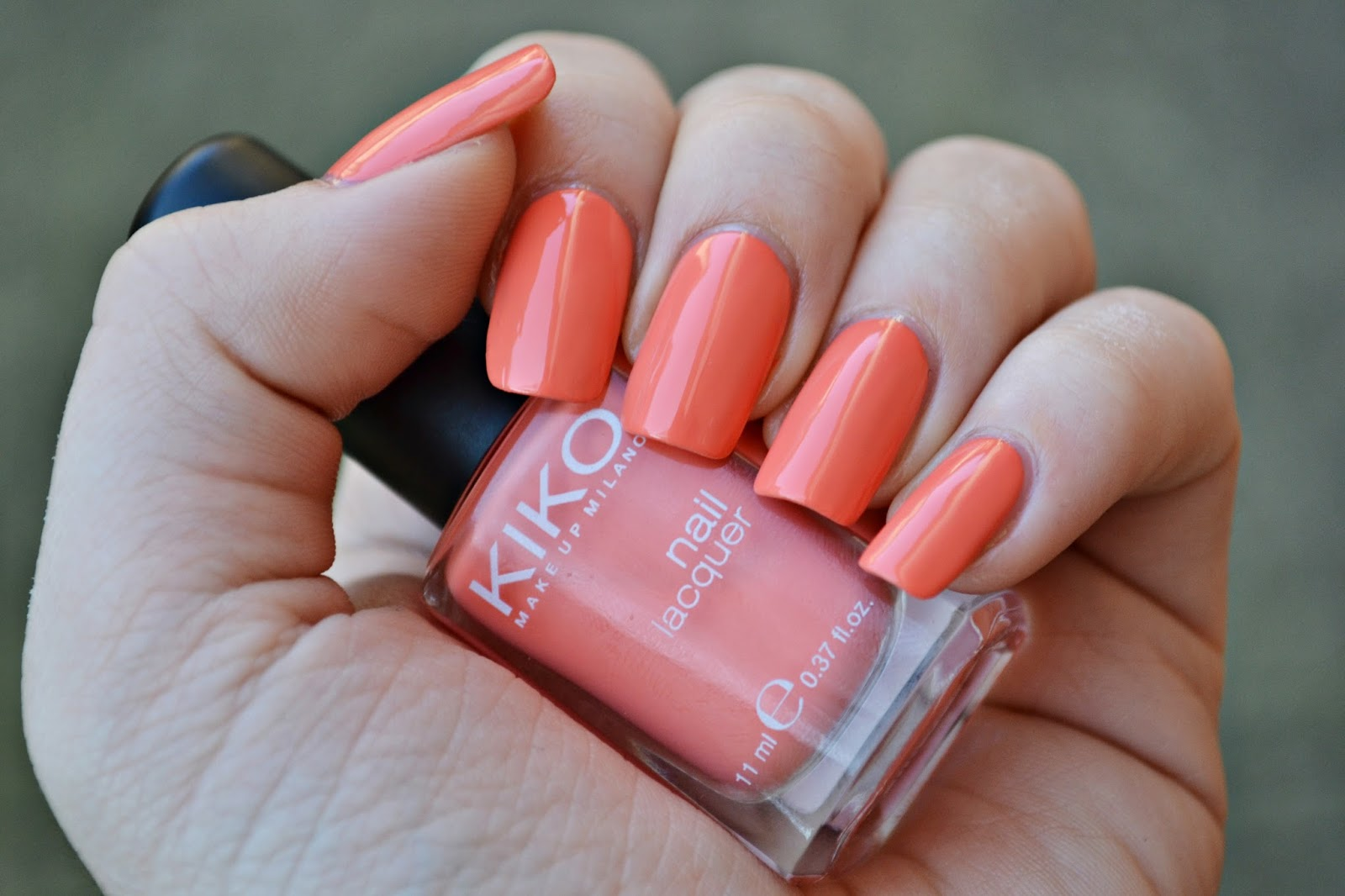Kiko 358 Peach Rose In Season Spring