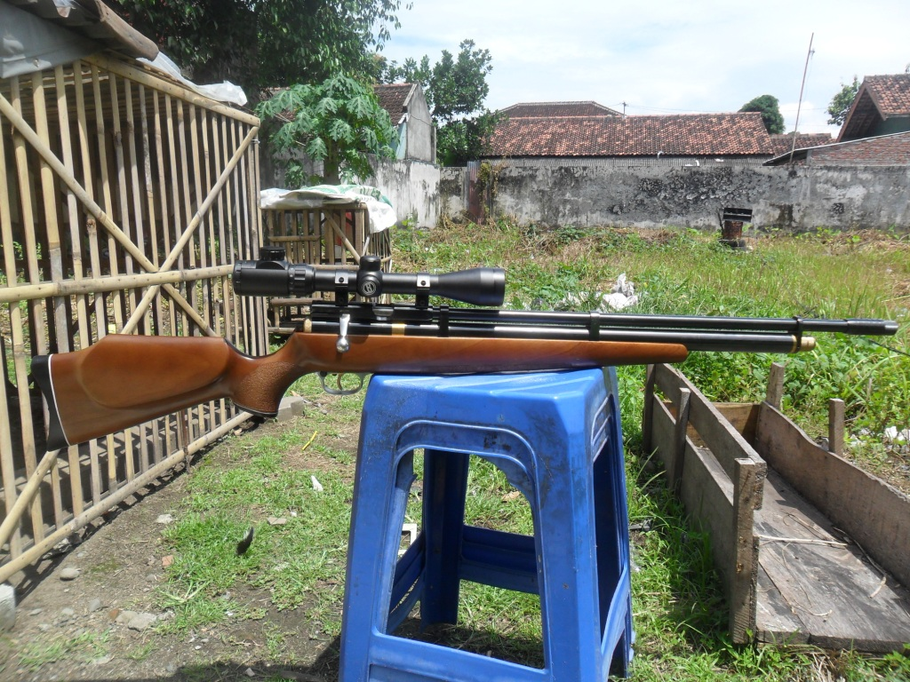 Air Rifle Hunting And Match Senapan Angin Pcp Laras Walther