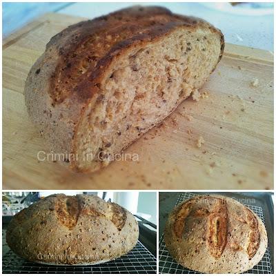 il mio primo pane ai cereali con lievito madre