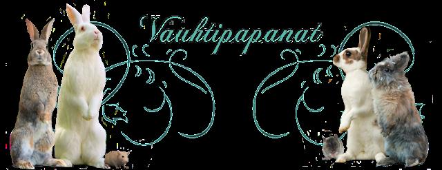 VauhtiPapanat♥