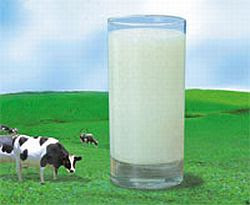 History And Nutrition Milk