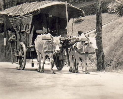 Transportasi jaman dahulu