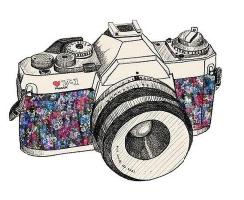 Mein Fotografie Blog (Klick aufs Bild)