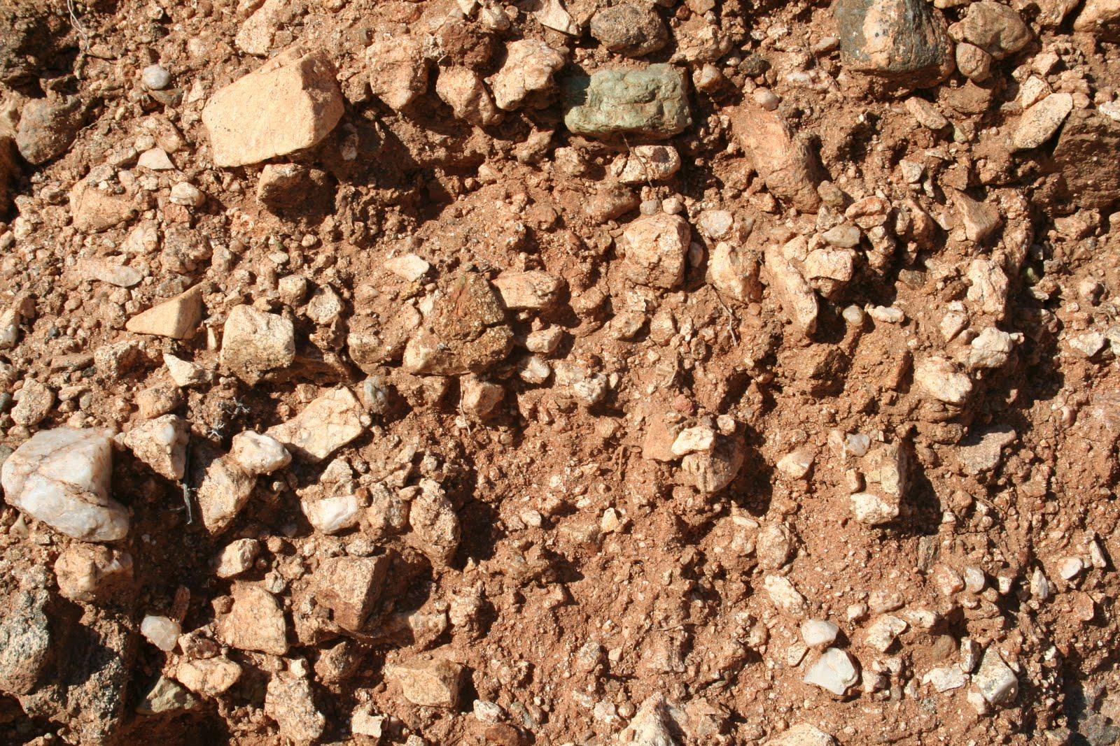 Practical biology science for everyone basic desert soil for What does soil