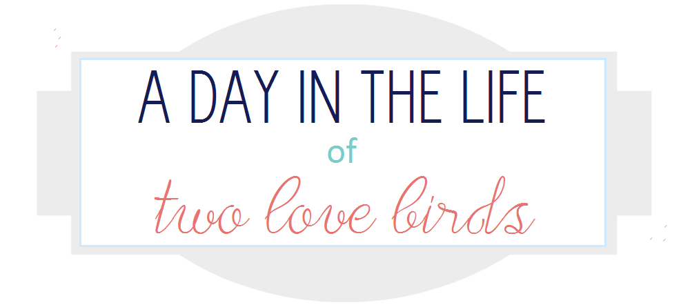 A Day In the Life of Two Love Birds.