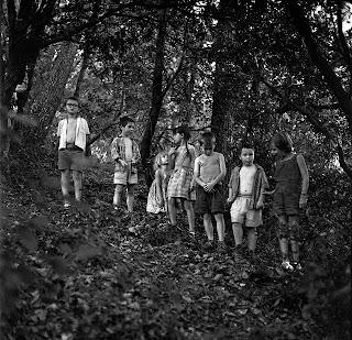 Groupe d'enfants perdus dans la forêt.