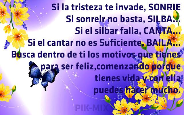 Flores, mariposas, Frase de Motivación