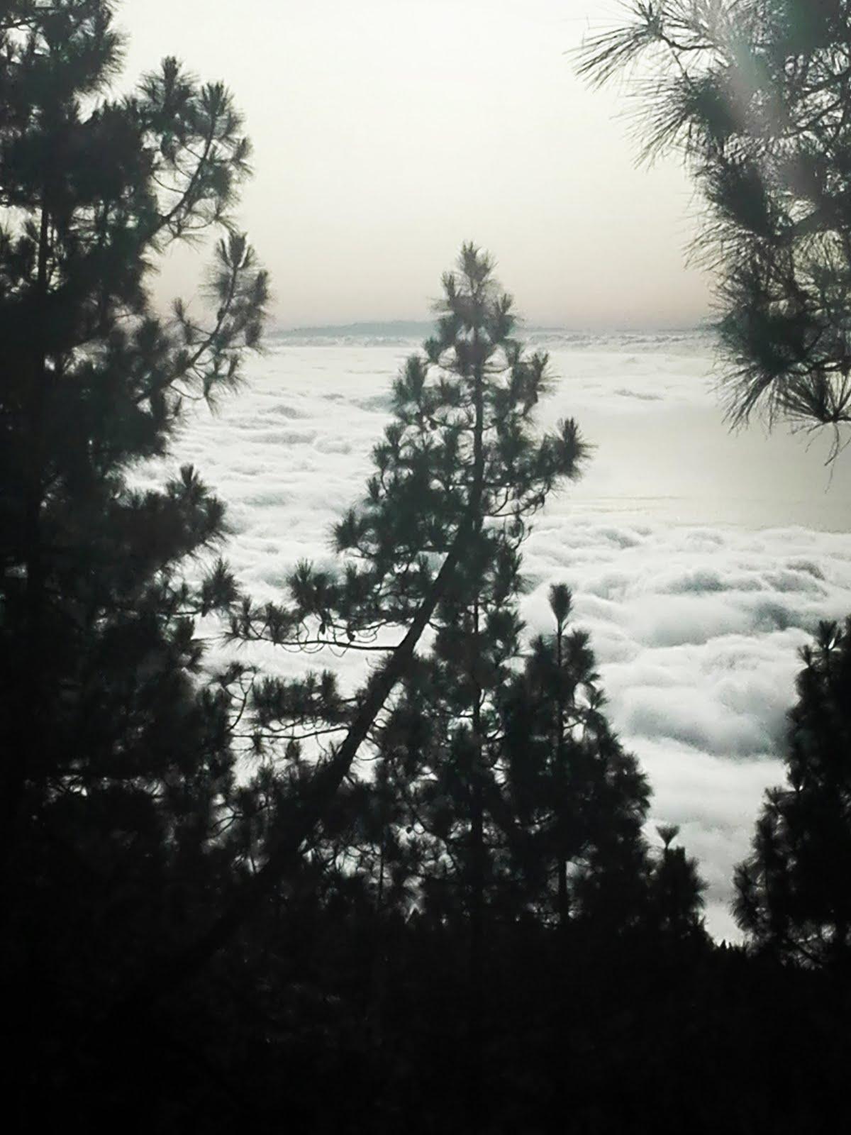 Mi mar de nubes