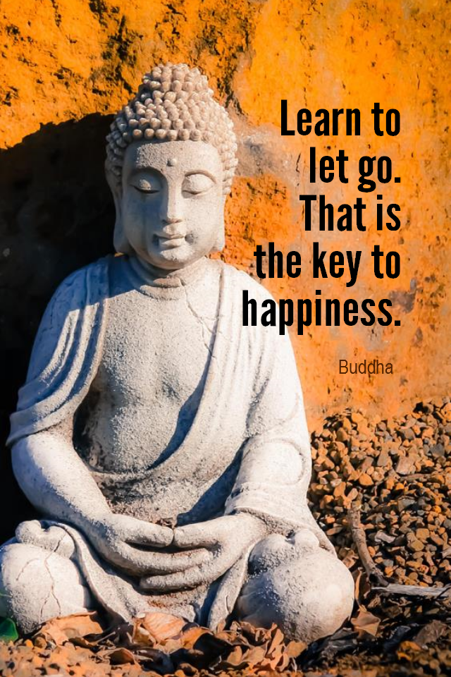 visual quote - image quotation for HAPPINESS - Learn to let go. That is the key to happiness. - Buddha