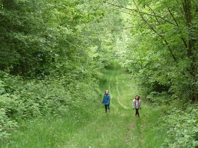 June walk
