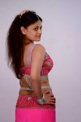 Sneha Ullal Glamorous in Pink Photo shoot-thumbnail-10