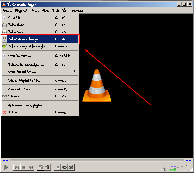 VLC Streaming