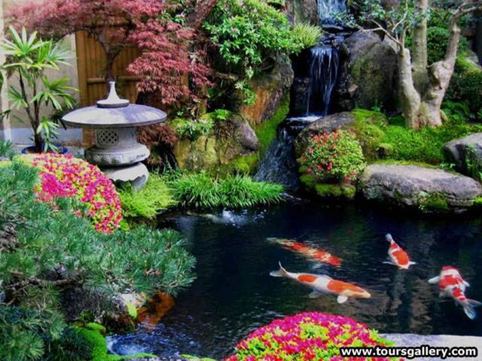 imagens jardins lindos:Olhares e Imagens do meu coração !!!: Os mais lindos jardins pelo
