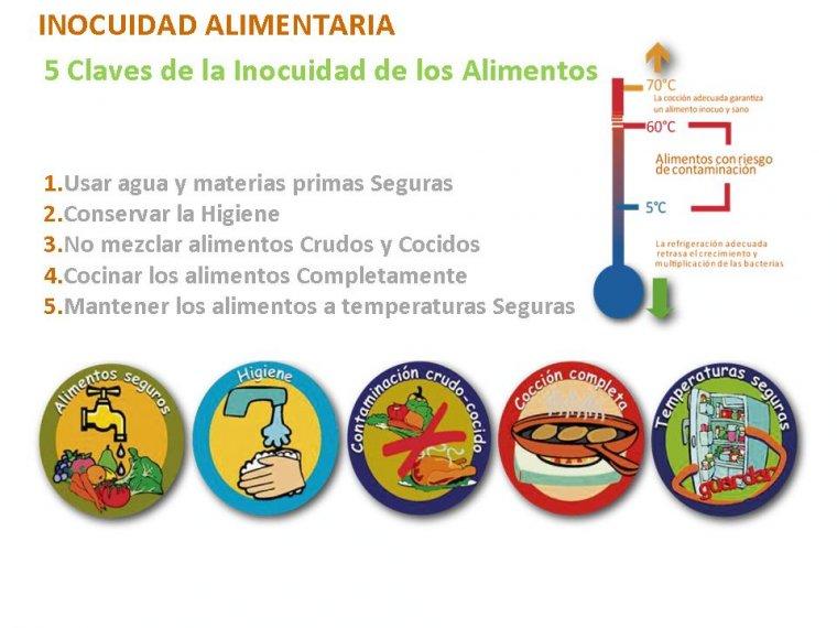 Tecnica manipulacion de alimentos ufp vanesa villamil 11 for Manual de buenas practicas de higiene y manipulacion de alimentos