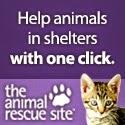 Help Animals!