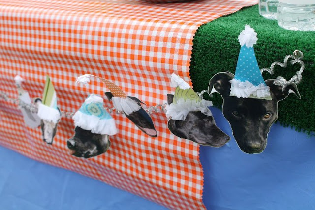 dog_birthday_party dog_bunting