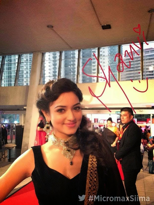SIIMA Awards 2014 Photo Gallery   Stills   Tollywood Celebrities