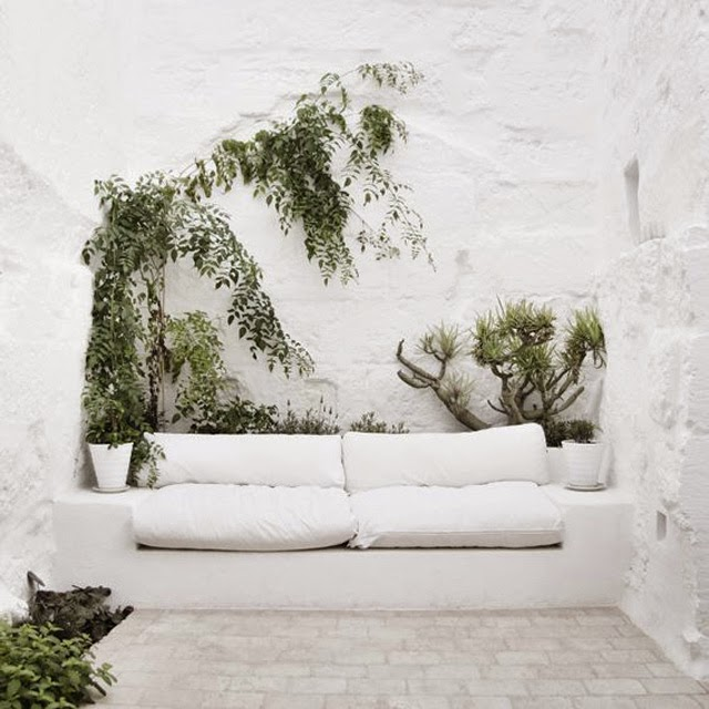 white interior couch and plants
