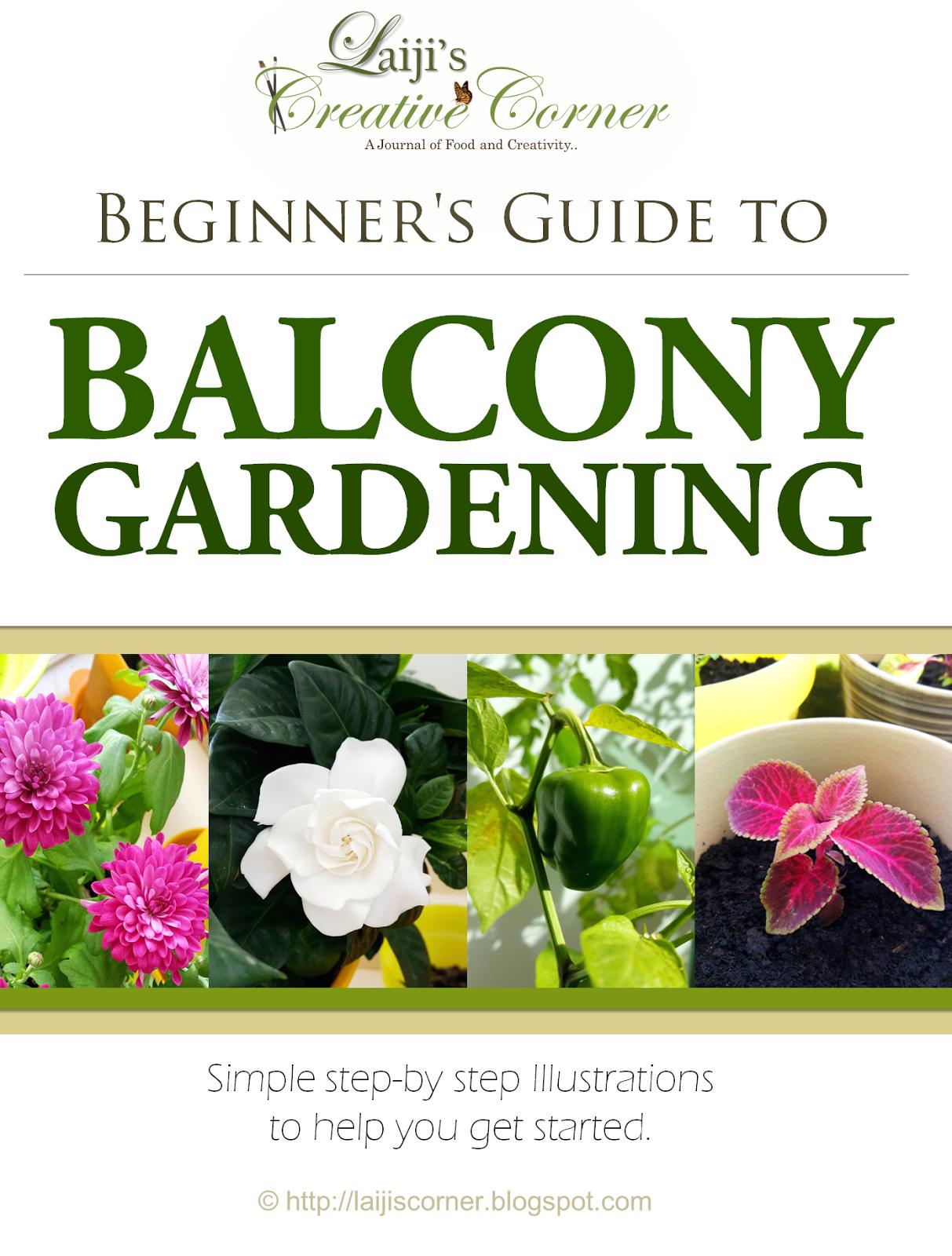 Laiji 39 S Creative Corner Beginner 39 S Guide To Balcony Gardening