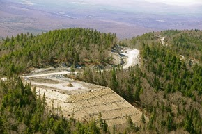 http://vce.org/Wildlife_Habitat_of_Vermont.pdf