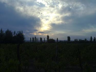 Mendoza-  Argentina