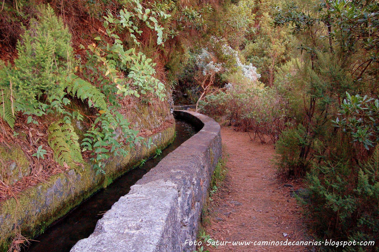 Caminos de Canarias: Senderismo en La Palma – Marcos y Corderos
