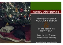 2012 HOLIDAY CARD GALLERY