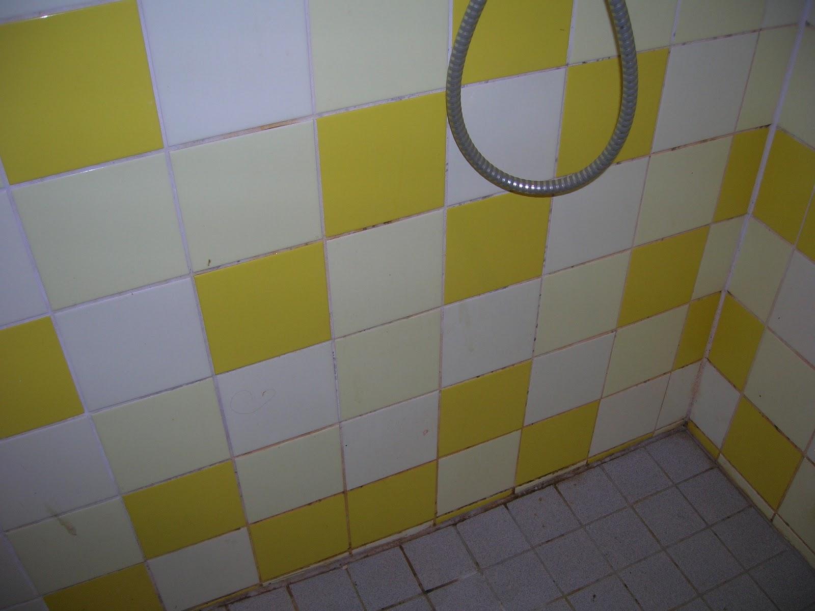 Bruine Voegen Badkamer : Inhaalslag in dagen voegen in de douche schoonmaken