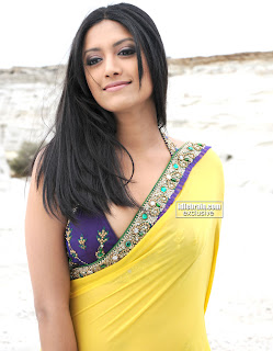 mamta mohandas hot navel and cleavage show in saree