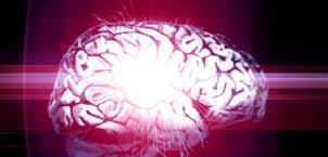 A dor pode encolher o cérebro