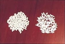 beras-jepang-beras-pendek