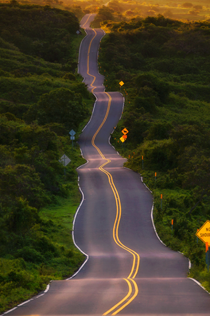 Drunk Highway, Maui, Hawaii