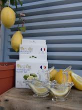 FRANSK-DESIGN.NO; Ferskpresset sitron i smakfull fransk design, med spesialrabatt til mine lesere!