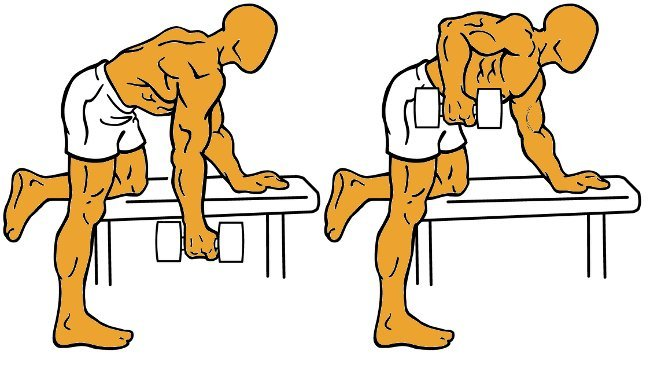 Diario de entrenamiento octubre 2012 for Gimnasio 8 de octubre