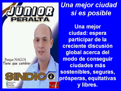 JUNIOR PERALTA...SINDICO 2016-2020