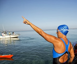 Diana Nyad, Cuba, Key West, Havana, swimming, shark cage
