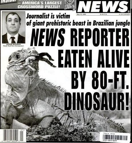 Weird News  Odd and Strange News Stories  ABC News