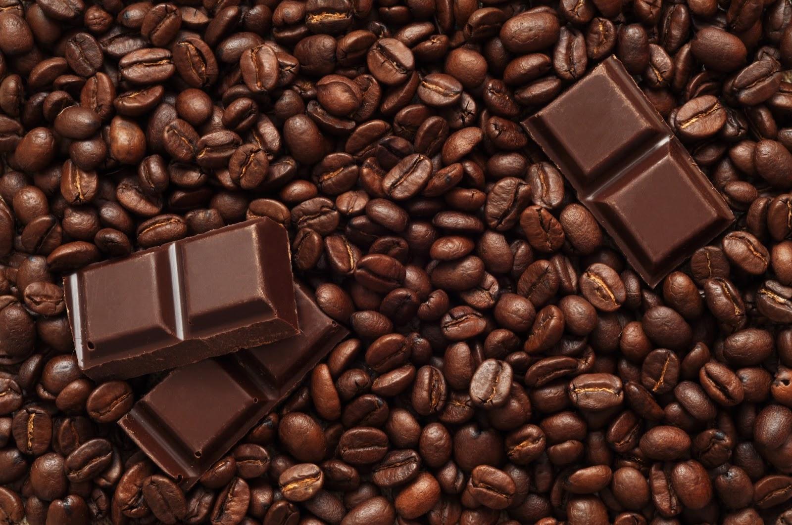 Food Talk Bean To Bar The Chocolate Story