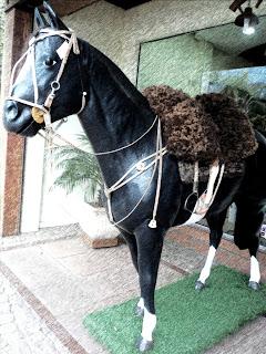Cavalo em frente a uma loja de artigos gauchescos.