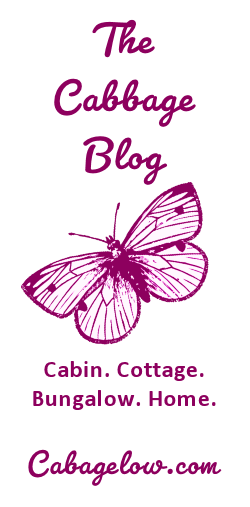 Visit The Cabbage Blog