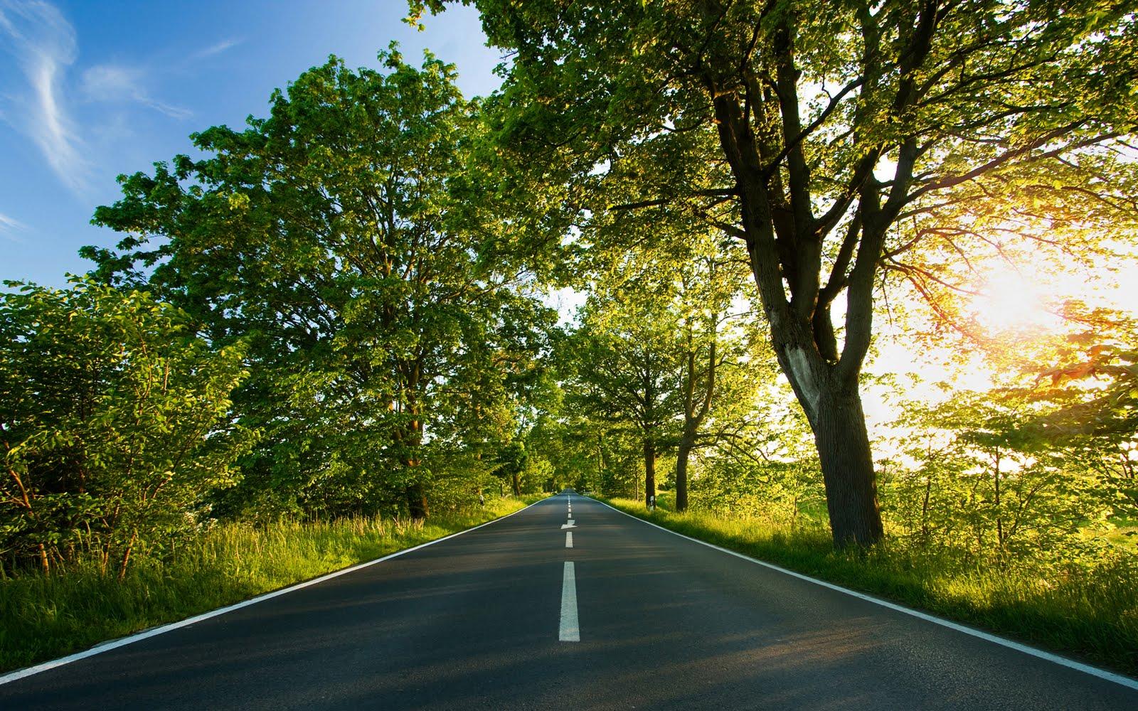 http://3.bp.blogspot.com/-7_VnBdQJnvM/TmS_hiXMIZI/AAAAAAAAAdc/9ROo2aQzaJU/s1600/Wallpapers-room_com___One_Path_Wallpaper_by_emats_1920x1200.jpg