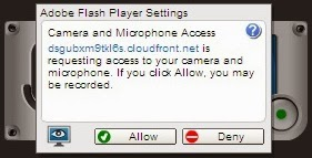 click allow to access your Camera and Microphone