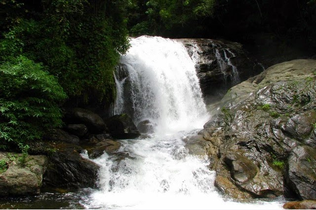 Attukad Waterfalls in Munnar