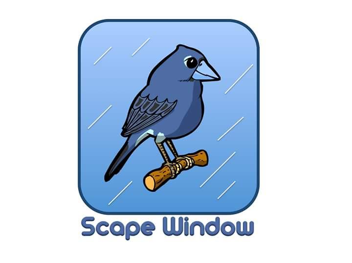 Scape Window